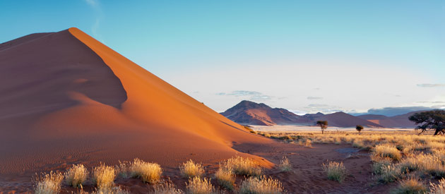Namibia Tour Operator: What a Great Operator Will Provide